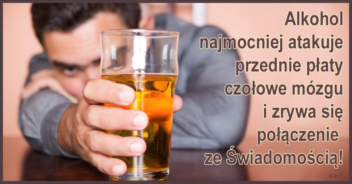 Alkohol najmocniej atakuje przednie płaty czołowe mózgu i zrywa się połączenie ze Świadomością! Ale nie na zawsze! Dlatego wymyślono stonkę i powszechne stonkowanie!