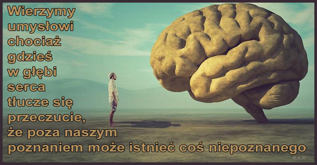 Gdyby umysł był facetem i zapytalibyśmy go, czy istnieje coś takiego jak świadomość, odpowiedziałby bez wahania, że nie! I byłby w przeraźliwie mylnym błędzie.